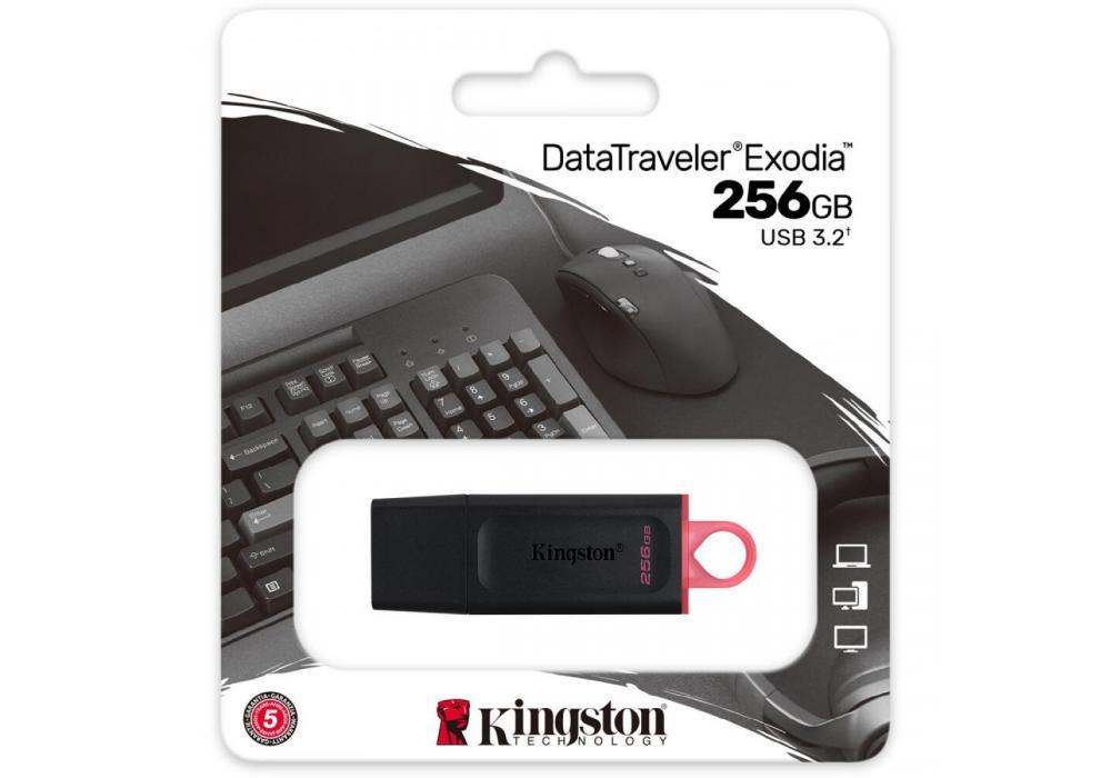 Kingston Flash 256GB DataTraveler Exodia - USB 3.2